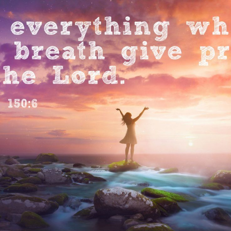 Let everything which has breath give praise to the Loard. - Psalms 150:6